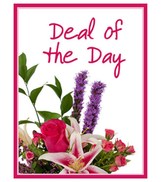 Deal of the Day - Valentine\'s Day