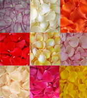 Fresh Rose Petals In Bulk