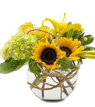 SUNFLOWERS, HYDRANGEAS & LILIES in a Modern Bouquet DELIVERED SAME DAY, Sunnyslope Floral