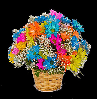 Crazy daisy basket