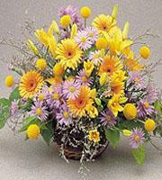 Mille Fleur Basket Arrangement