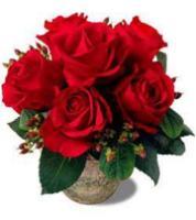 Terracotta Roses