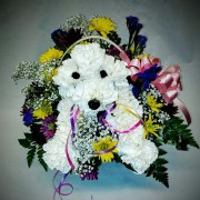 PEQUA PUPPY FLORAL ARRANGMENT