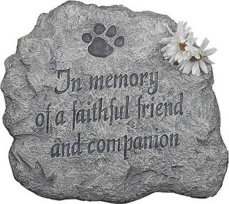 Stepping Stone-Faithful Friend and Companion