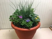 Murphy Florist Patio Planter