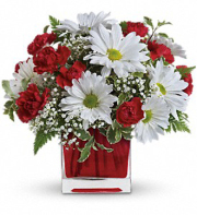 Red White Delight by Teleflora