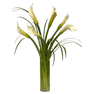Charismatic Callas, lilies, anniversary