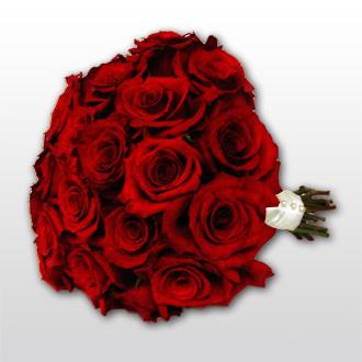 Radiant Roses, bridal bouquet