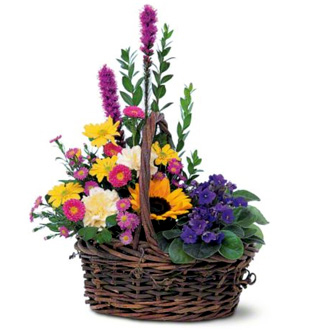 Basket Of Glory, violets, sunflowers, daisies, asters, carnations, liatris, sympathy and funeral