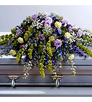 Lush Casket Spray, roses, delphinium, bells of ireland, sympathy and funeral