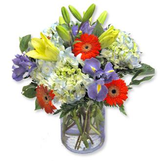 Firework Flare, daisies, lilies, hydrangea, irises, birthday