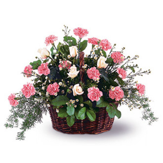 Pink Reverence Arrangement, carnations, roses, sympathy and funeral