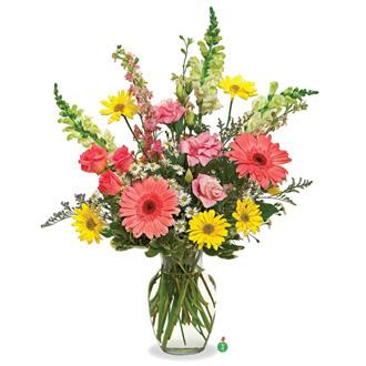 Power of Flowers, snapdragons, gerberas, daisies, roses, friendship, get well