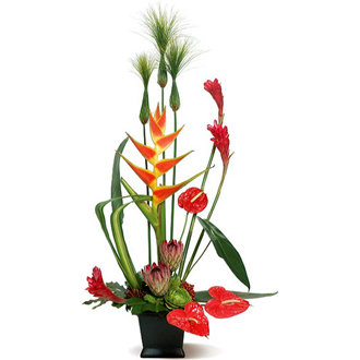 Sunset Glow, tropical, anthurium, succulents, ginger, top of the line