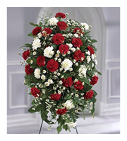 Crimson and White Standing Spray, carnations, monte casino, pompons, sympathy and funeral