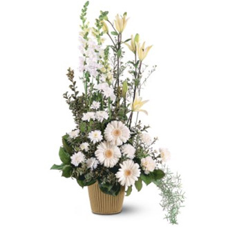 White Impressions, carnations, chrysanthemums, gerberas, lilies, asters, snapdragons, sympathy and funeral