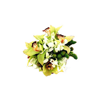 Simply Green Orchid Clutch, bridal bouquet