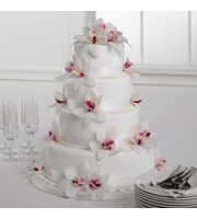 Orchid Cake Flowers
