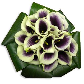 Modern Picasso Calla Bouquet, tropical, bridal bouquet