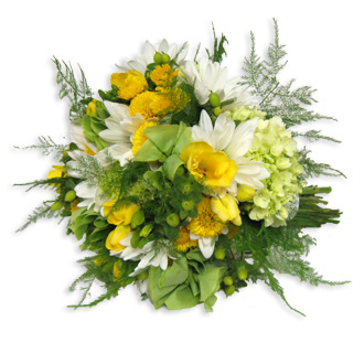 Yellow and Green Grace, hydrangea, Bells of Ireland, freesia, daisies, mums, hypericum, bridal bouquet