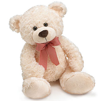 Plush Cream Jackson Bear