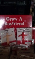 Grow a Boy Friend