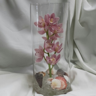 Orchid in Glass Medium