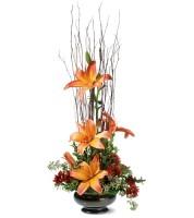 Zen Lilies
