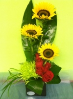 Sunflower Mums & Roses