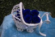 Its a Boy Carriage Preserved Roses