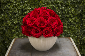 Red Rose Ball White Base Preserved Roses