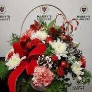 Candy Cane Lane Arrangement