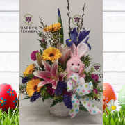 white basket with pink lilies, yellow germinis, magenta mini carnations, irises, pussy willow stems, solidago, purple statice, strict berzillia and a poke-a-dot bow with pink plush bunny toy