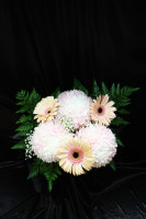 Commercial Gerbera Bouquet
