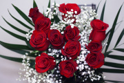 70cm Red Roses
