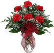 TF844 CARNATIONS