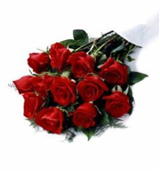 Dozen Red Roses Medium Stem