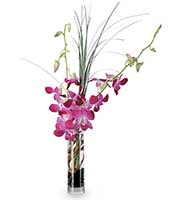 Blooming Orchid Vase
