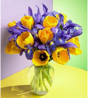 Yellow Tulip and Iris Bouquet