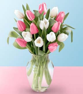 Pink and White Blushing Tulip Bouquet