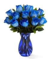 Bodacious Blue Roses Arranged