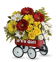 Baby's First Wagon – Girl