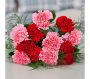Valentine's Day Red & Pink Carnations Bouquet