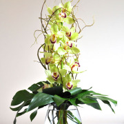 CARISMA FLORISTS®Cymbidium Orchid Arrangement CF-04
