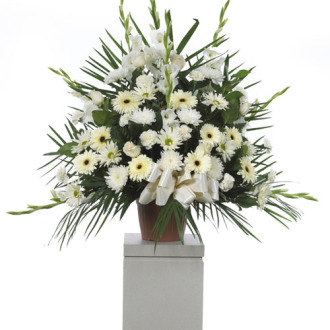 CARISMA FLORISTS® White roses Container 4