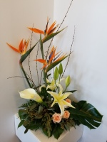 Arrangement exotique