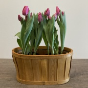 Double Tulip Crate