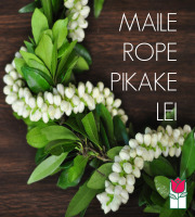 [Out Of Season] Maile Double Pikake Lei