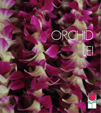 10 Orchid Lei