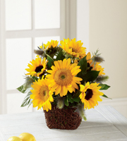 The FTD® Perfect Sun™ Bouquet